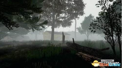 绝地求生<a class='simzt' href='http://www.3dmgame.com/games/luoshenbr/' target='_blank'>大逃杀</a>雾天效果 绝地求生雾霾天气效果解析