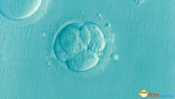 未来科技:科学家首次成功从人类胚胎中移除基因