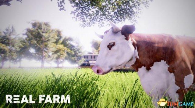 来体验最真实种田游戏 《真实农场》已经正式推出