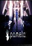 P.A.M.E.L.A. v1.0024十项修改器[MrAntiFun]