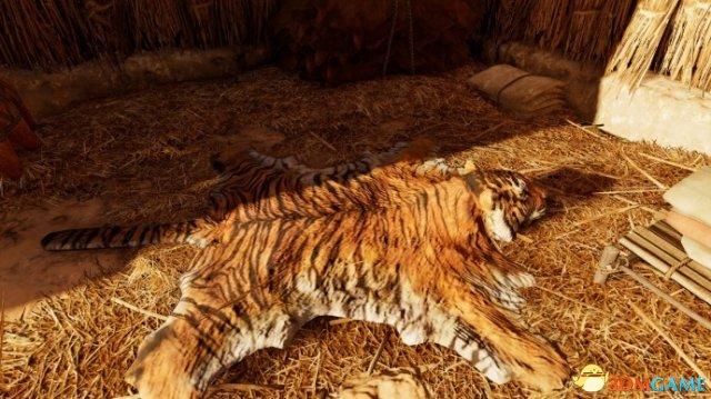 刺客信条起源全动物图鉴 信客刺条有哪些动物