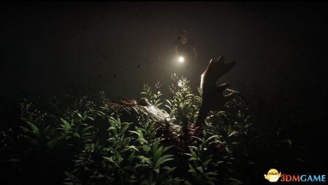 第一人称恐怖游戏《修炼成精的老树妖》上线Steam