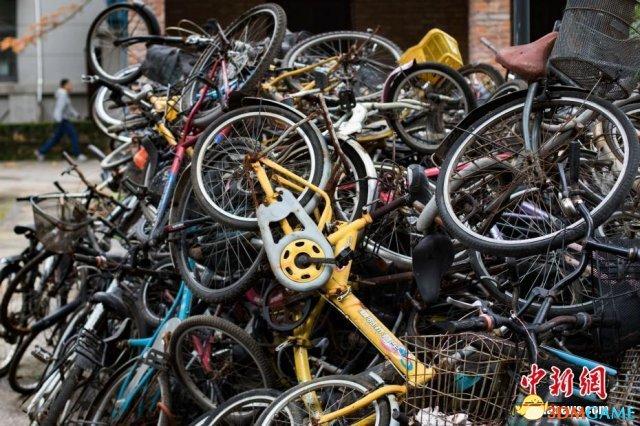 高校堆积僵尸单车:毕业生随意弃置竟成单车坟场