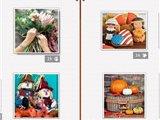 sbf胜博发备用网址_假日拼图:感恩节3 英文免安装版