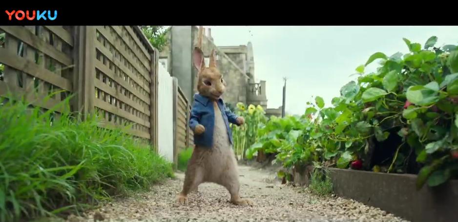 真人动画电影《彼得兔》预告