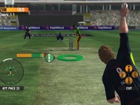 国际板球2010 游戏截图