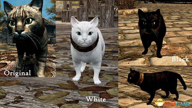 上古卷轴5 宠物家猫毛色发声包MOD