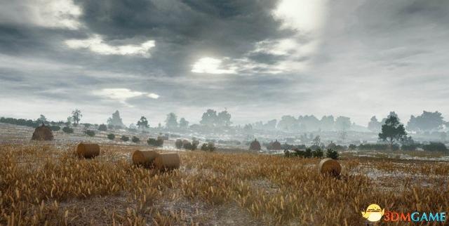 玩家感觉 《绝地求生》 地图空旷 建议加入鸟与野兽