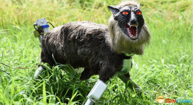 黑科技稻草人 日本狼形呆板人專門看管農田成效斐然