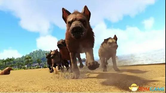 《方舟:生存进化Online》带一只狗狗助你今年行好运!