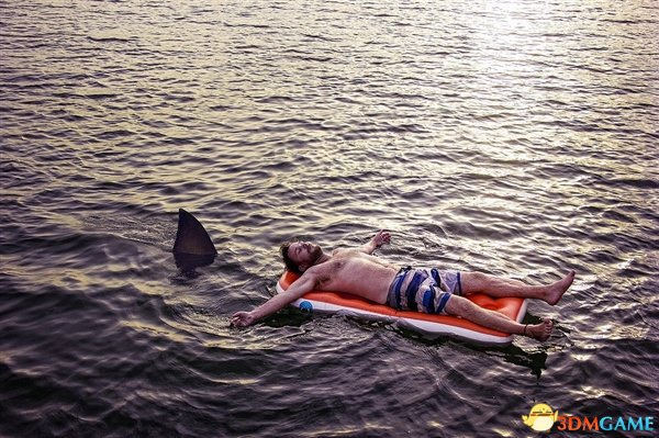 在海洋中游泳最大的风险不是鲨鱼 而是粪便细菌