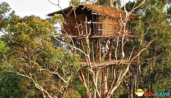BBC自曝紀錄片《人類星球》造:土著人不住樹屋