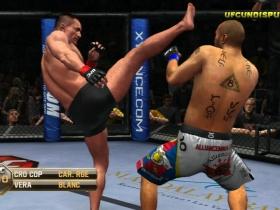终极格斗冠军赛2010 游戏截图