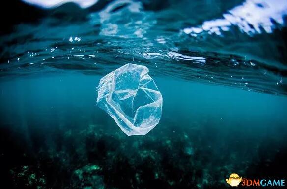 警惕白色污染!塑料袋浸泡海水后 堪比生物武器