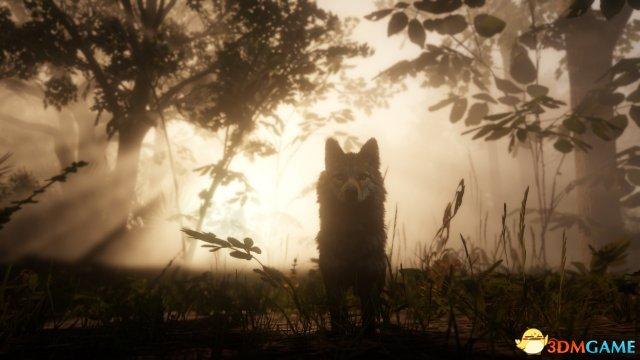 《荒野大镖客2》 全新截图 游戏画面太美让人沉醉