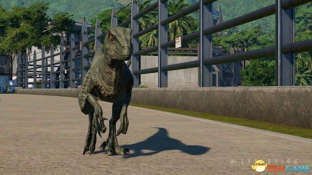 和恐龙一起生活 《侏罗纪世界:进化》新视频曝光