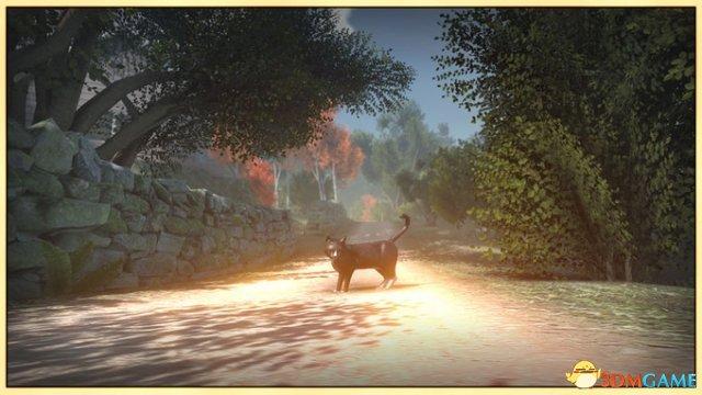 扮演貓咪 開放世界故事冒險遊戲《和平島》公布