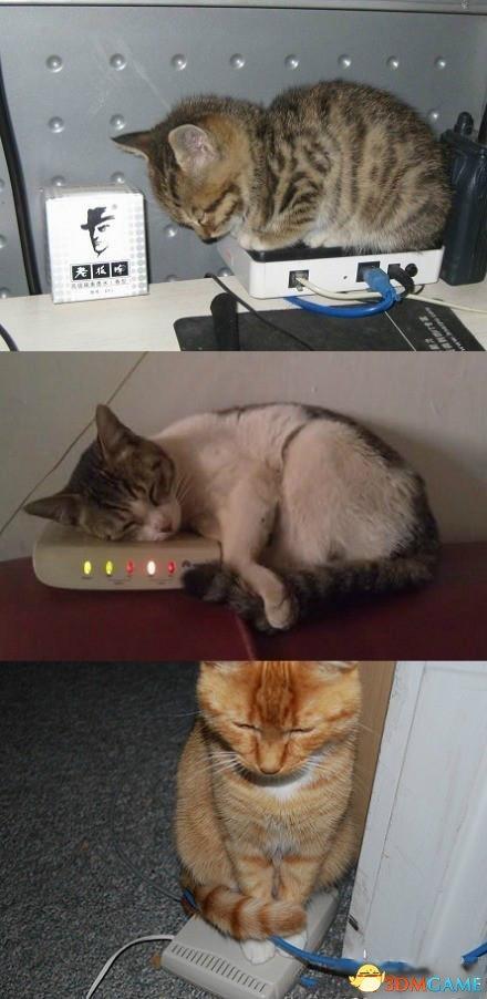 """办理宽带上网被要求带""""猫"""" 大爷不理解并报警"""