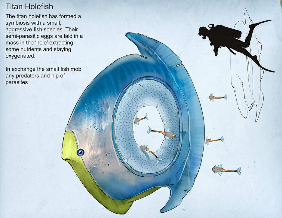 《深海迷航》零度之下生物图鉴
