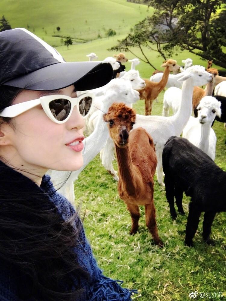 刘亦菲微博晒《花木兰》剧组合影照 与羊驼开心合影
