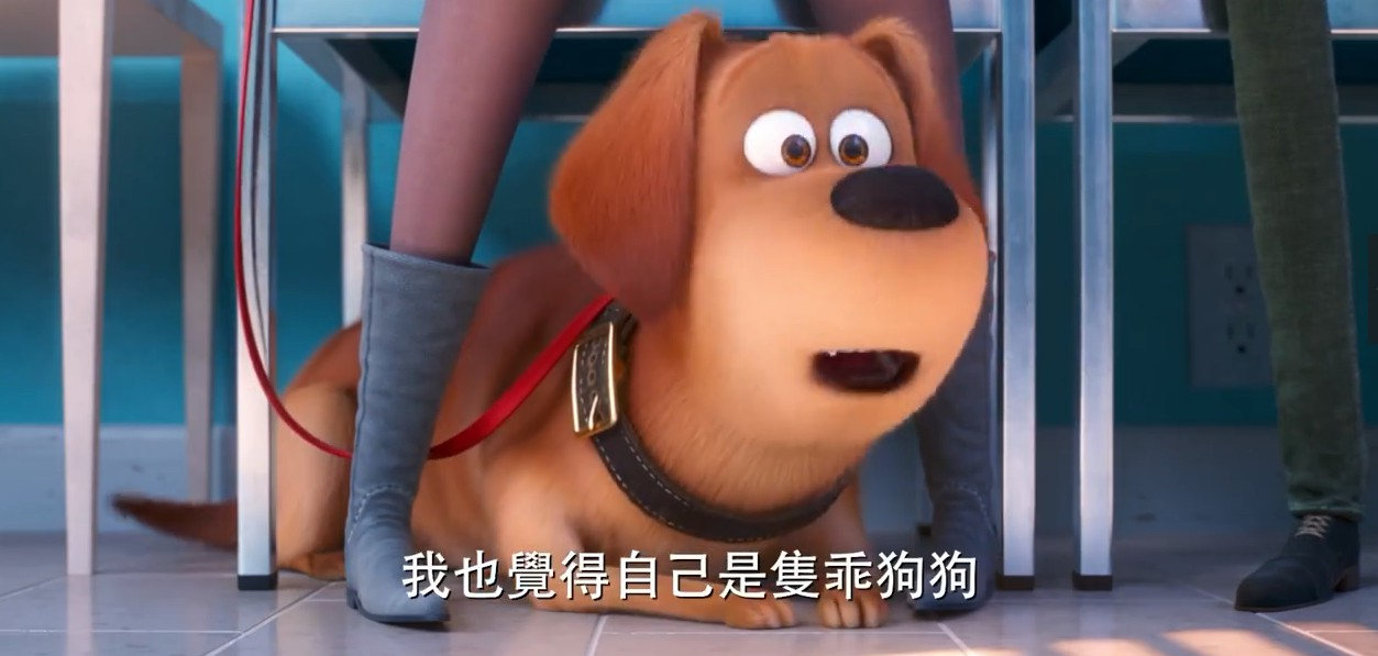 宠物心理疾病!?《爱宠大机密2》首支中文预告