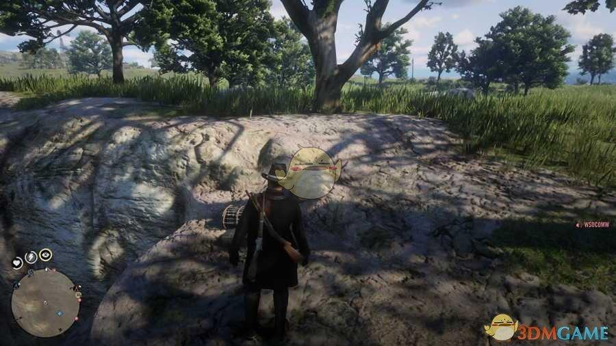 《荒野大镖客2》线上模式寻找藏宝图宝藏攻略