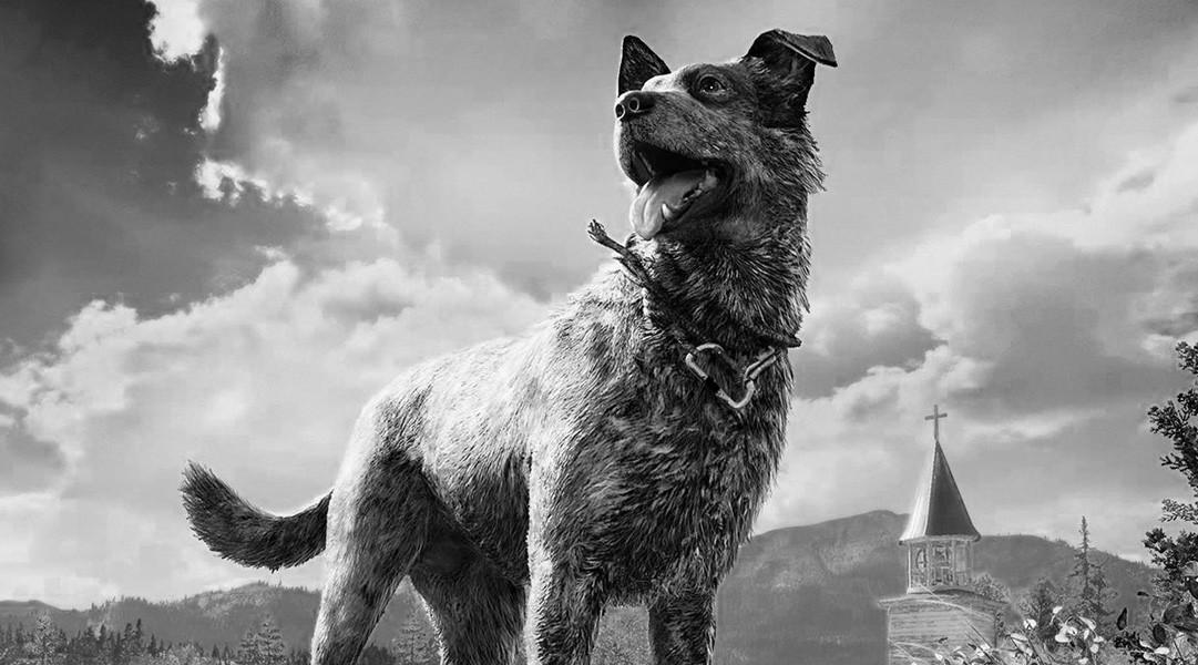 那条死不了的小狗在《孤岛惊魂:新曙光》里已经死了