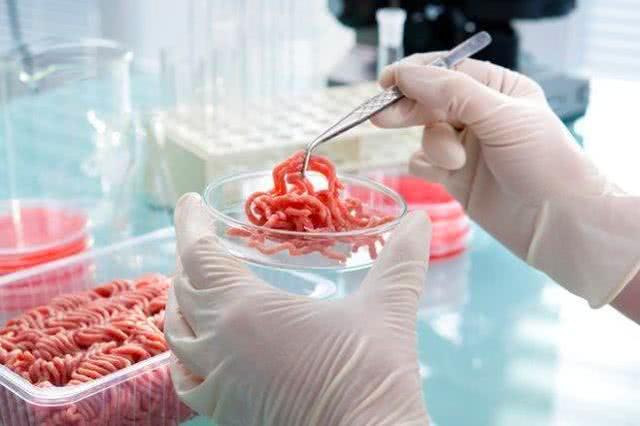 人造肉时代要来了?仅需60天即可造出超过五千吨肉