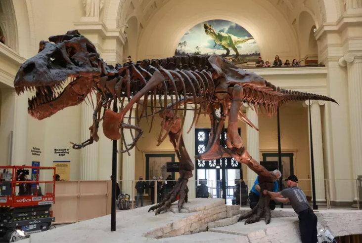 考古大神沉迷 《荒野大镖客2》  称发掘恐龙化石不科学
