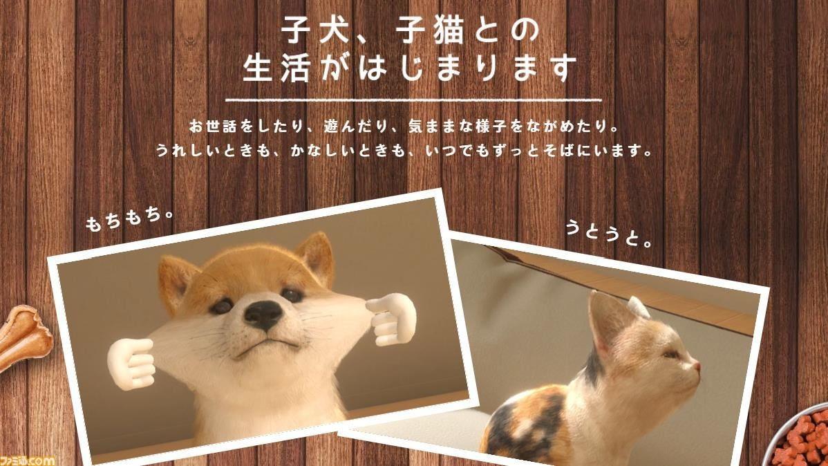 欢乐撸狗 《小小伙伴:狗狗与猫猫》繁中版4月发售