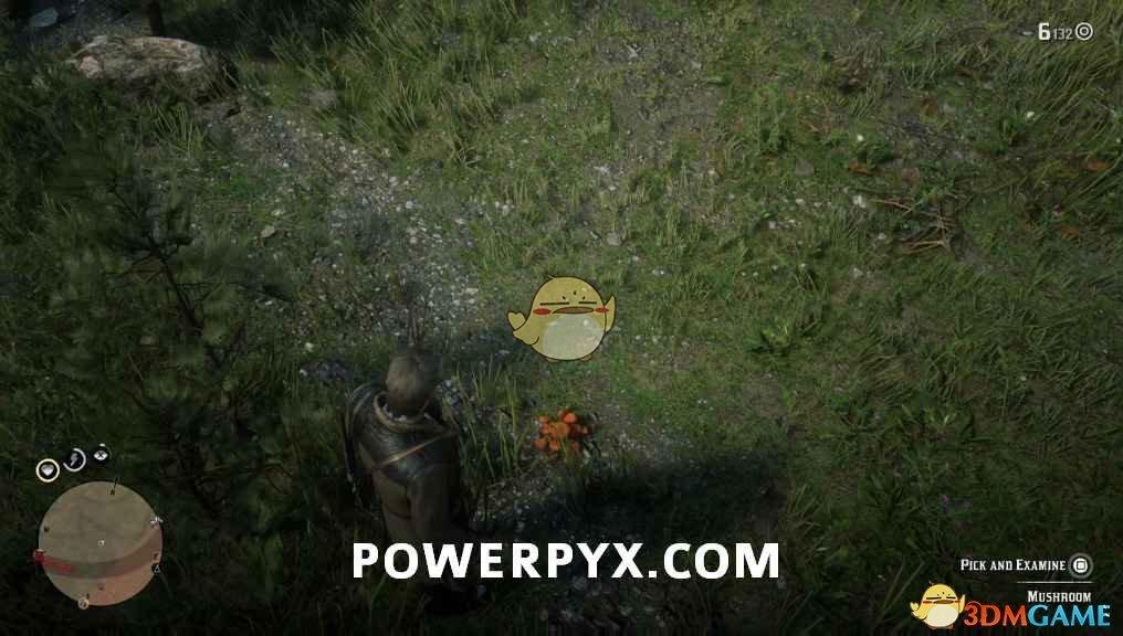 《荒野大镖客2》褐绒盖牛肝菌采集位置介绍