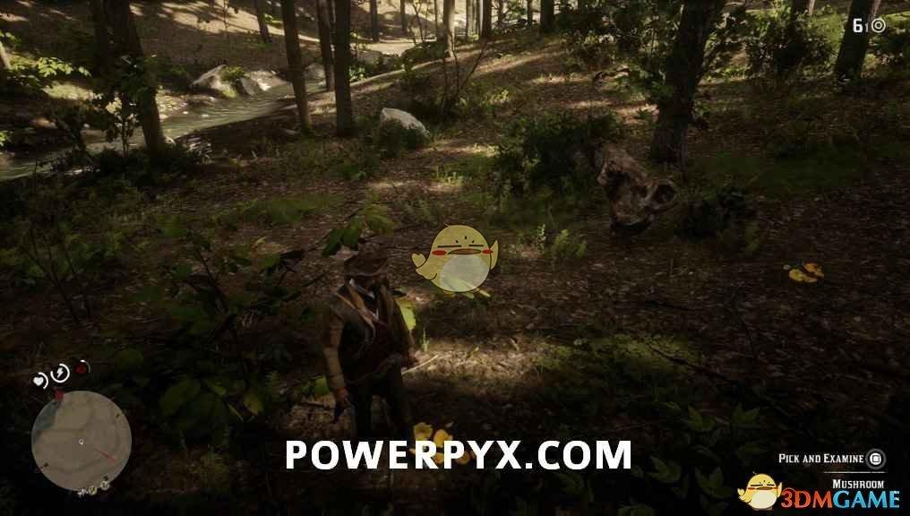 《荒野大镖客2》鸡油菌采集位置介绍