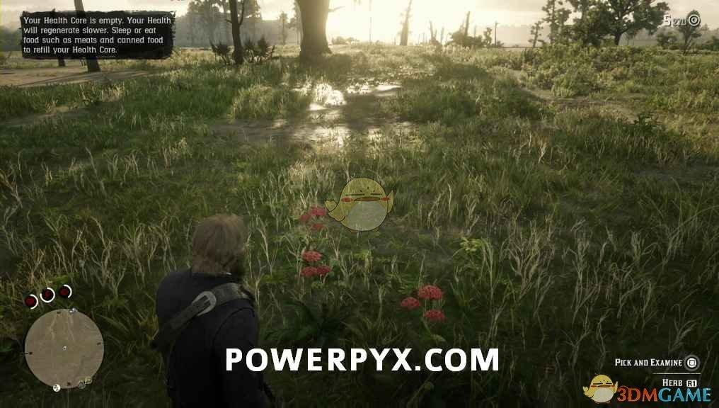 《荒野大镖客2》蓍草采集位置介绍