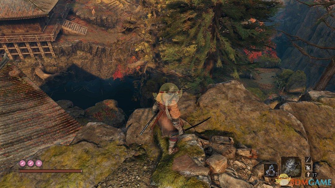 《只狼:影逝二度》干柿子获得方法分享