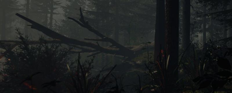 森林登山镐在哪
