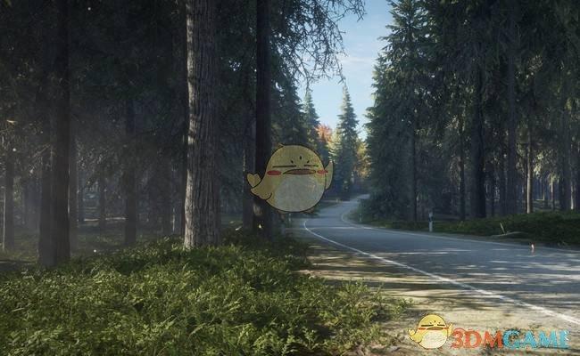 《猎人:荒野的呼唤》手枪配合主动技能推荐