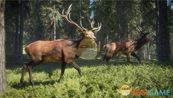 《猎人:荒野的呼唤》霰弹枪弹药详解