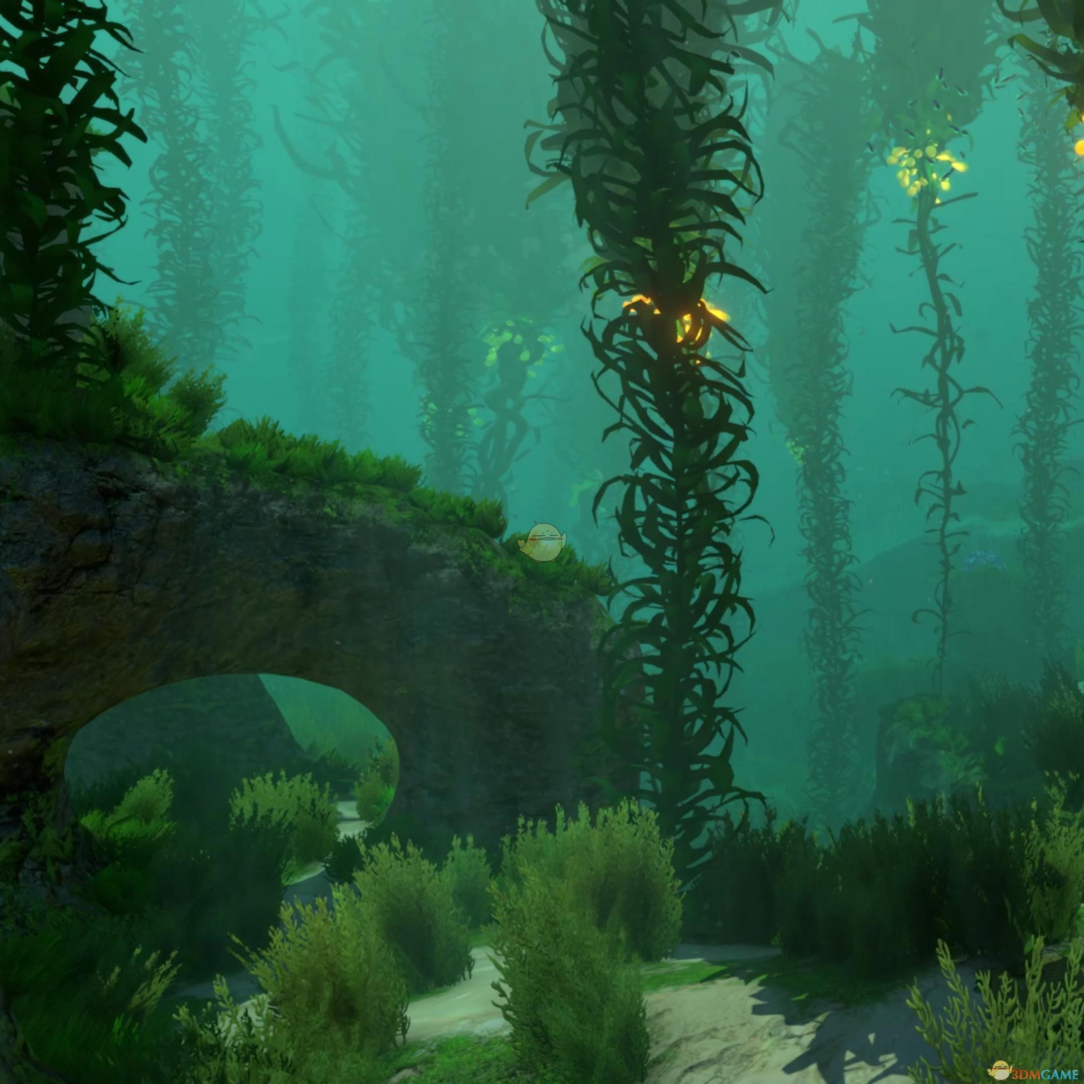 美丽水世界水下藤蔓动态壁纸下载 Wallpaper深海迷航壁纸下载 3dm单机