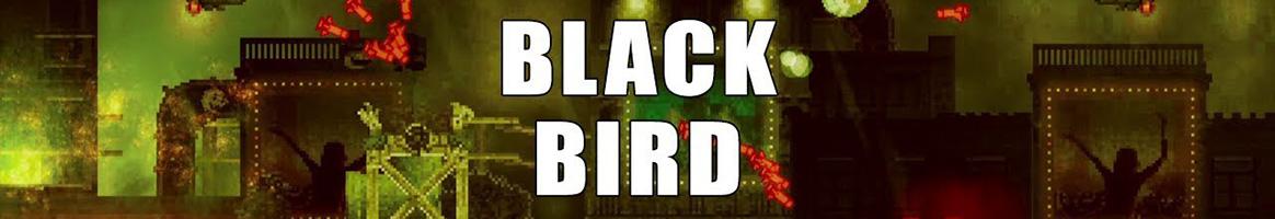 《黑鸟》简体中文免安装版