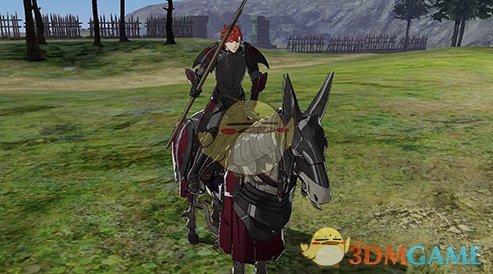 《火焰纹章:风花雪月》圣骑士兵种说明