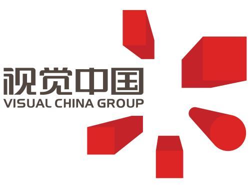 视觉中国公布上半年财报:营收4亿、同比下降16%
