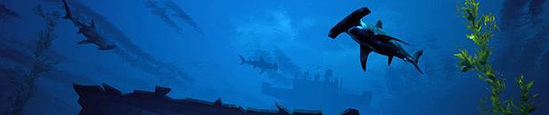 《食人鲨》游戏库