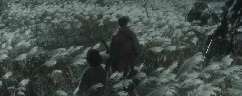 只狼水生村在哪