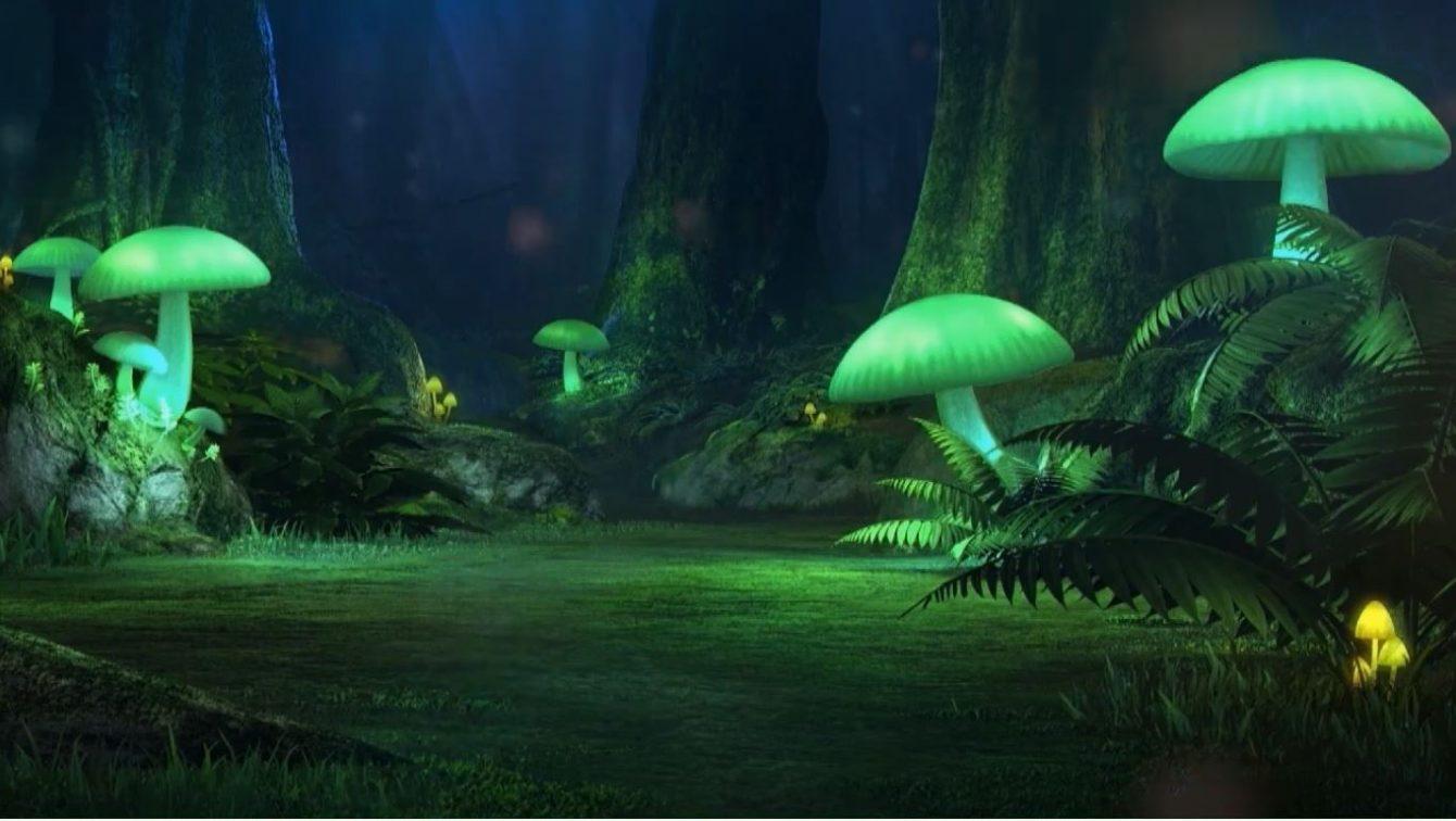 《精灵宝可梦:剑/盾》24小时直播有些无聊了