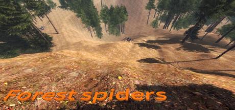 《森林蜘蛛》英免安装版