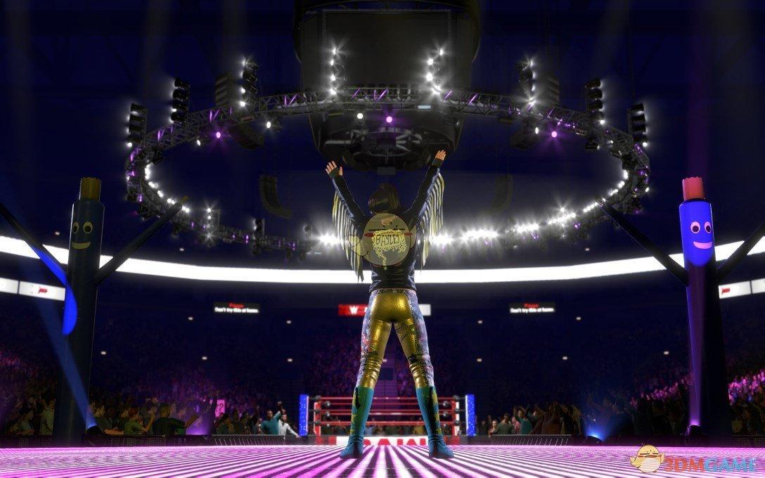 《WWE 2K20》游戏收藏版内容一览