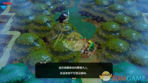 《塞尔达传说:织梦岛》迷雾森林攻略