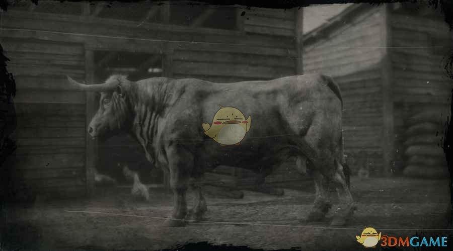 《荒野大镖客2》安格斯公牛图鉴一览