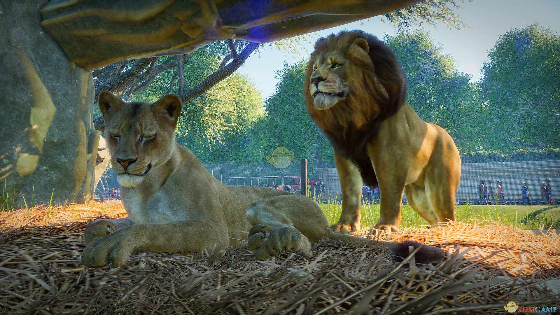 最新虚空恐惧最大的样子_动物园之星狮子长什么样子_PlanetZoo狮子动物外观一览_3DM单机