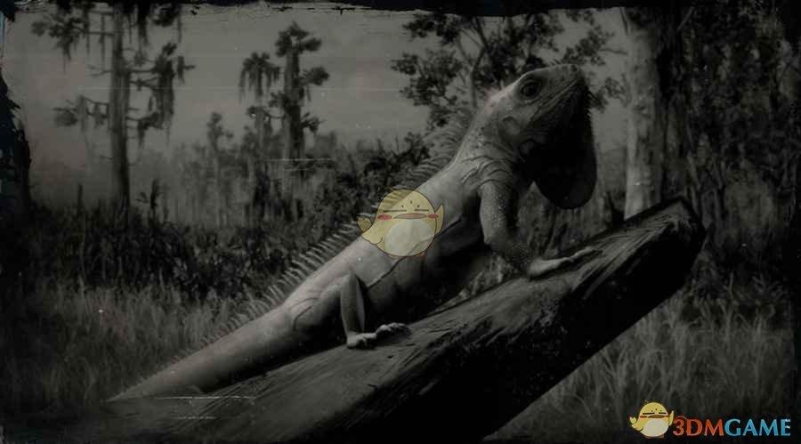 《荒野大镖客2》绿鬣蜥图鉴一览
